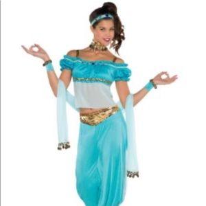 Adult princess jasmine costume